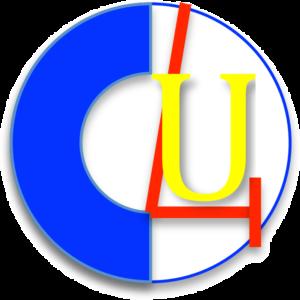Logo ChamberOrchestra4U